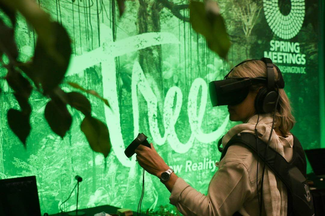 Tree Virtual reality experience